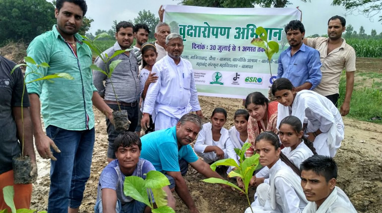 Tree Plantation held in several Districts of Hindon Basin