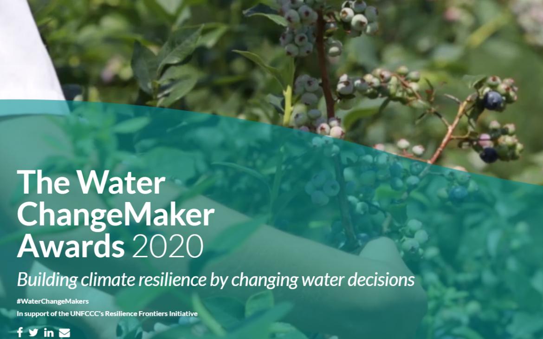The Global Water ChangeMaker Awards 2020